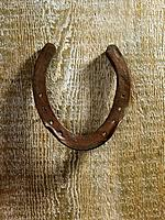 Horseshoe on fence (thumbnail)