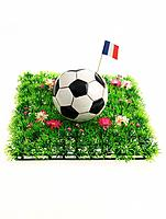 Soccer Ball with French Flag