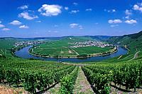 Germany, Europe, Trittenheim, Moselle River, Mosel bend, Rhineland_Palatinate, village, July 2007, Europe, landscape,