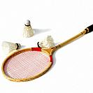 Badminton Racket and Shuttlecocks