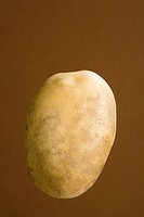 Potato