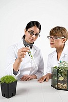 Scientists with plants (thumbnail)