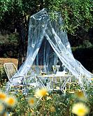 Cosy seat beneath a mosquito net
