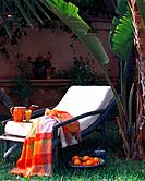 Relaxation in a palm garden (thumbnail)