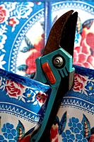 Secateurs in a pocket