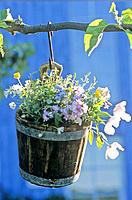 Flowers in a hanging wooden bucket