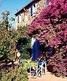 Table under bougainvillea (thumbnail)