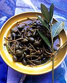 Capers and a laurel twig
