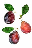 Three plums
