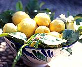 Lemons in a porcelain bowl