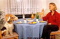 Fox Terrier and woman _ sitting at table