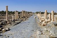 Old ruins of columns, Umm Qais, Jordan