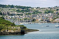 Sailboats at harbor, Kinsale, Cork County, Munster, Ireland