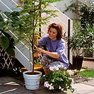 woman cutting plant