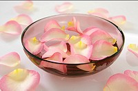 Rose petals in a dish (thumbnail)