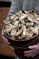 Person holding bucket of oysters