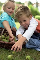 Little girl and boy with a basket of limes, selective focus