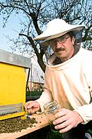 A beekeeper with bees death