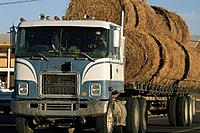 USA, Kansas, hay bales on semi_truck