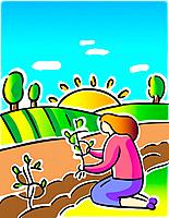 Woman planting trees