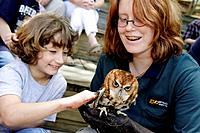 Virginia, Roanoke, Mill Mountain Zoo, screech owl, bird, animal, trainer, girl, student, touch,