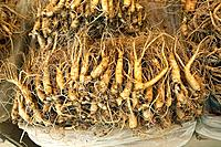 Ginseng roots, Kyongdong market, Seoul, South Korea