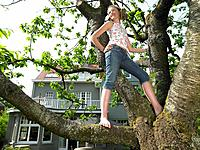 Girl in a tree, smiling