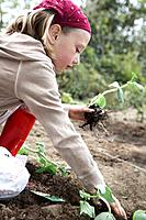 Young girl planting vegetables (thumbnail)