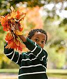 African boy holding autumn leaves