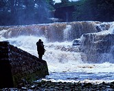 Salmon Fishing, Ballisodare River, Co Sligo, Ireland