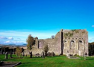 Ougheval Abbey, Near Stradbally, Co Laois, Ireland