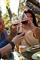 People toasting at dinner party