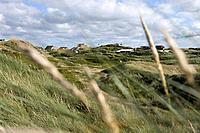 Vacation Homes in Dunes, Henne Strand, Central Jutland, Denmark