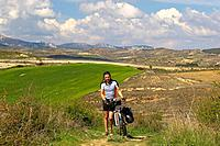 Landscape with pilgrim pushing bike, near Viana, Navarra, Spain