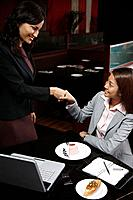 Businesswomen shaking hands (thumbnail)
