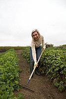 Woman using a rake in organic garden, Ladner, British Columbia, Canada