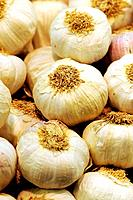 Garlic at La Boqueria market, Barcelona. Catalonia, Spain