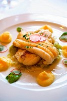 Sole fillets with asparagus and radish sauce