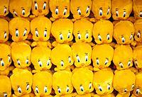Twinky, yellow teddies