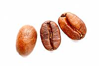 roasted coffee_beans, coffea spp, coffea arabica