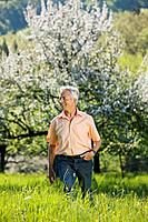 Germany, Baden Württemberg, Tübingen, Senior man walking in meadow