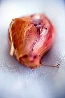 Piece of red onion