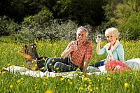 Germany, Baden Württemberg, Tübingen, Senior couple having picnic