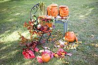 Autumnal garden decoration with pumpkins, flowers & leaves