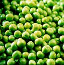 some little small green peas grains