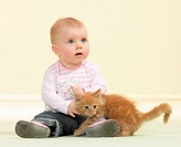 girl with Maine Coon kitten restrictions: Tierratgeber_Bücher / animal guidebooks