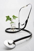 Sapling in a jar of water with a stethoscope