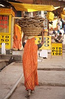 Woman carrying cow dung in basket on head, Om Kareshwar, Madhya Pradesh, India