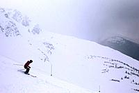 Downhill skiier, Whistler, British Columbia, Canada