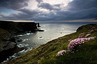 Loop Head, County Clare, Ireland, Seascape with cliffs